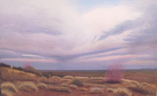 sm_Apache Junction, Arizona, acrylic on canvas 30 X 48 Commissioned 2013